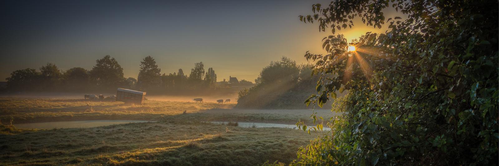 20160830_mistige-ochtend-in-bergelen-fotografie-krist-menen_-2
